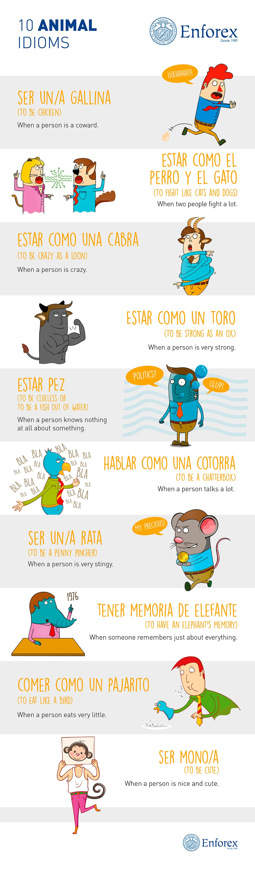 animal idioms some concepts in spanish however are completely different than their english language equivalents take a look at the infographic to help you learn and