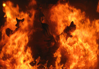 Fire at Fallas